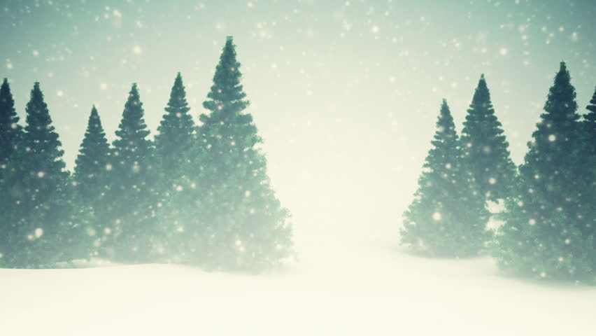 Pine trees and falling snow. Winter landscape  | Shutterstock HD Video #5025908