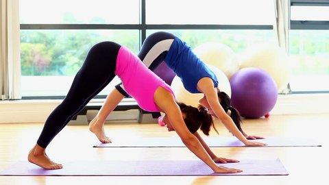 Slender fit women doing yoga on exercise mats in fitness hall