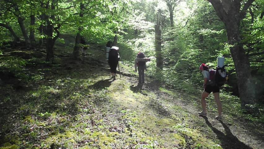 Hikers group trekking in Crimea | Shutterstock HD Video #5174147