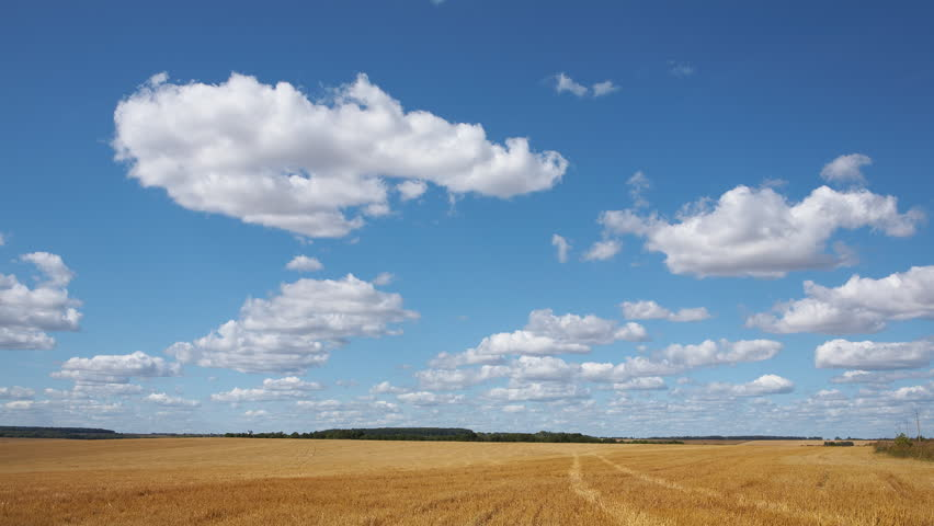 Time-lapse: white clouds flying on blue sky over yellow field