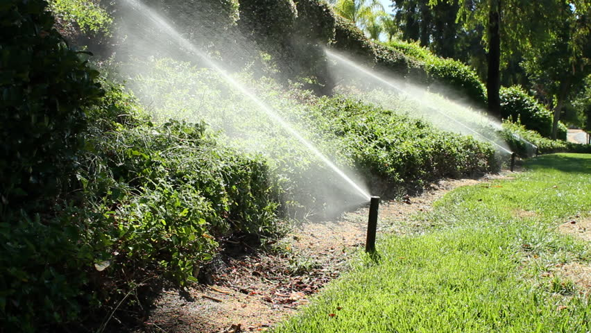 Sprinklers spray landscaping then turn off. Shot with a Canon 7D at 24p.