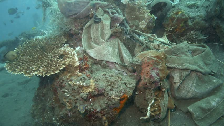 Nylon bags and other discarded human garbage permanently tangled onto coral reef in Amed, east Bali