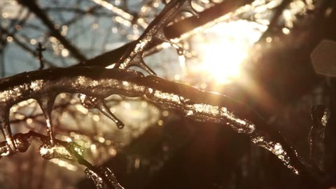 Ice Storm, Icing , Icicle Melting