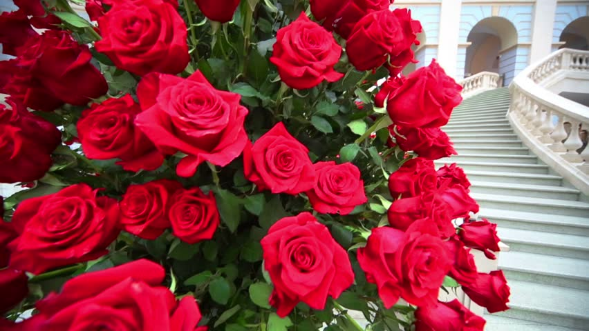 large white staircase beautiful large bouquet of red roses near white marble staircase