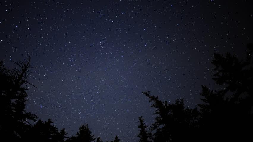 Time lapse of starry sky over alpine forest tilt down - Starry sky 4k ...