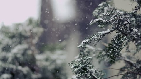 Winter Scene - Slow Motion Snow - Christmas Season and decorations.