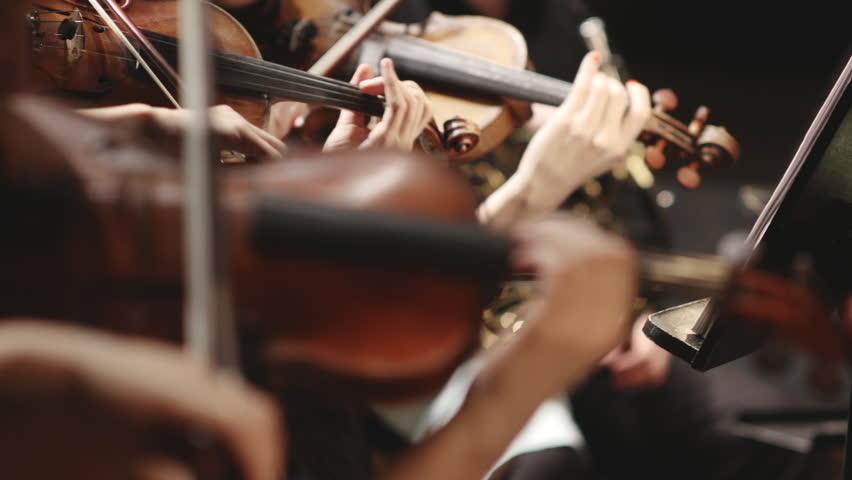 symphony orchestra #6266207