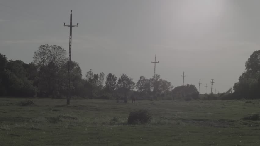 Stock video of electricity poles on countryside neutral color ...