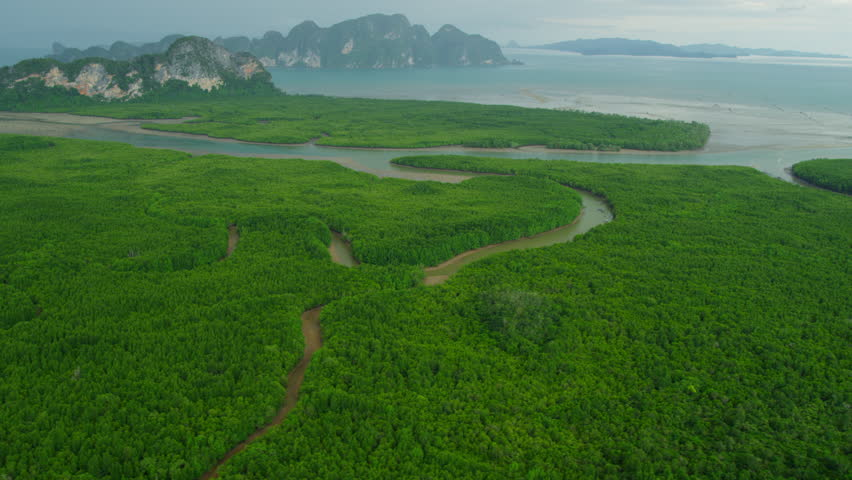 Aerial view of limestone cliff uninhabited islands, rich mangrove forestation, Phang nga bay, Southern Thailand, Asia, RED EPIC