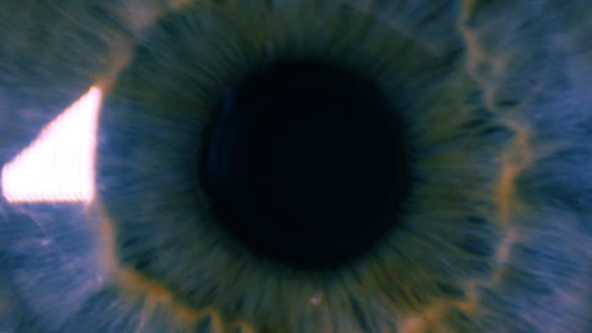 Eye iris pulsating #6604487