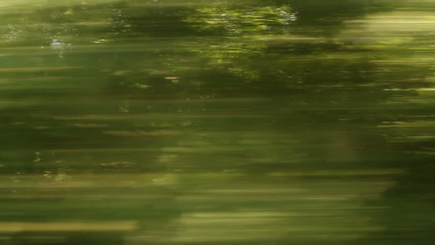 Window View from Car, Bus, Train. Traveling Full HD videos - No 170 - train going really fast