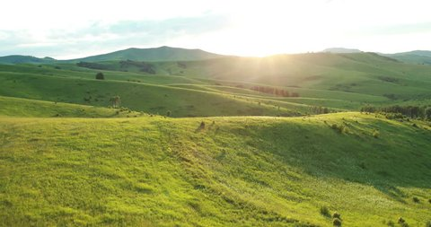 Aerial View. Sunset. Flight over a green grassy hills. Altai Mountains, Siberia, Russia. Summer 2013. 4K resolution.