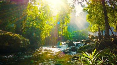 Video 1080p - Creek near waterfall in Phnom Kulen National Park. Cambodia. Siem Reap