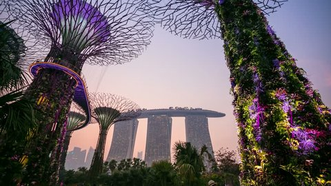 SINGAPORE - CIRCA FEB 2014: 4k timelapse view of Supertree Grove and Marina bay Resort hotel, changing from day to night.