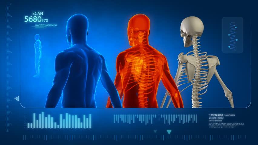 Header of human body