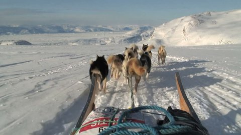 POV dog sledding near the village of Tasiilaq East Greenland