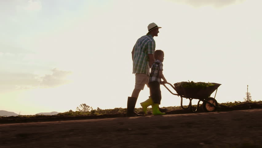 Farming Father Helping Son Push Stock Footage Video 100 Royalty Free 7921207 Shutterstock