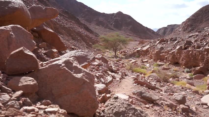 Stones and wadi in Negev desert, Israel | Shutterstock HD Video #8113447