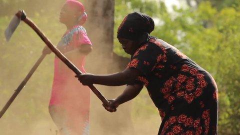 MOSHI, TANZANIA - MARCH 2013: African ladies manually ploughing a field in rural Tanzania, Africa