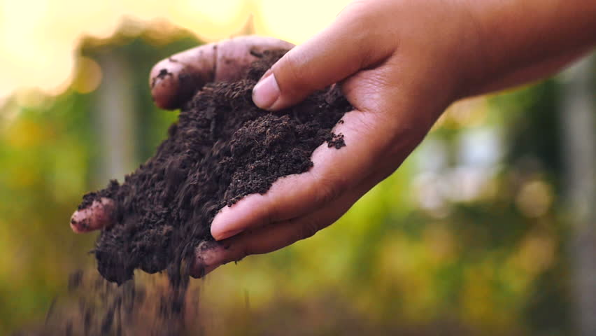 Soil, Agriculture, Sunlight,Slow motion, Farmer hands holding and pouring back organic soil on sunrise light | Shutterstock HD Video #8946022