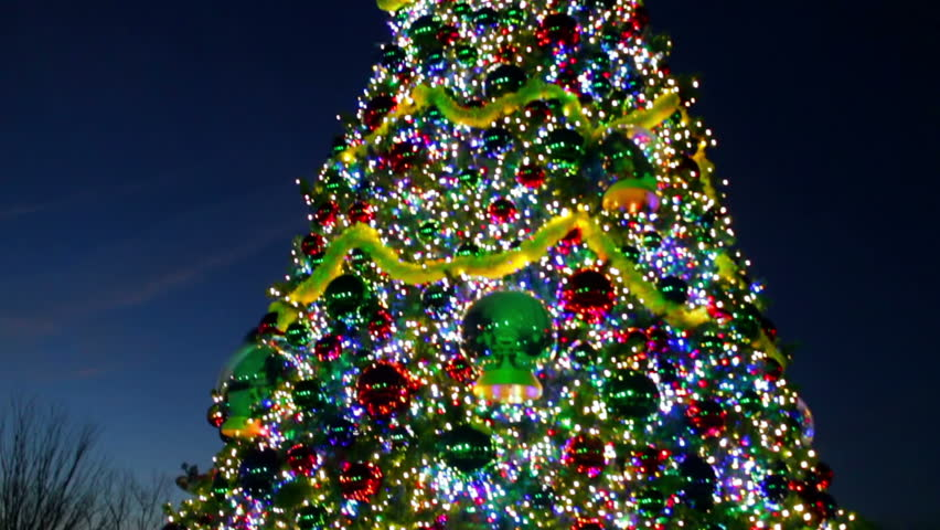 Big Christmas Trees Part - 41: Tilt Up Of A Big Outdoor Decorated Christmas Tree Located In A Town. - HD