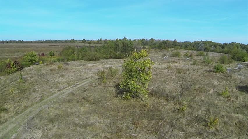 Green tree in the field. Aerial Landscape   Shutterstock HD Video #9017077