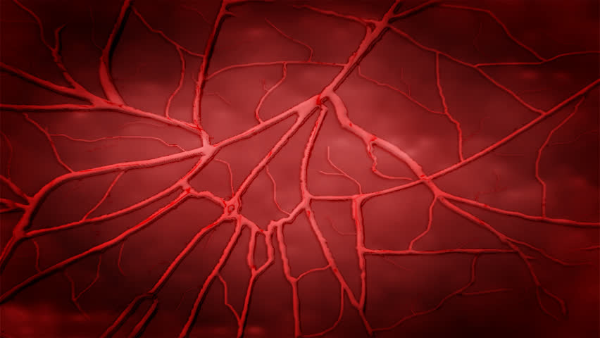 heart beat and zoom into blood vessel HD pal 1080x720