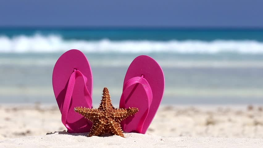 Pink Flip Flops And Starfish Stock Footage Video 100 -8886