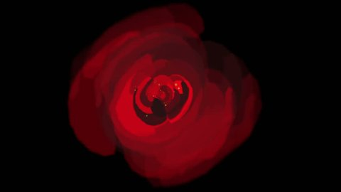 4k rose opening time lapse with smooth rotation.lover,Valentine's Day & wedding background. 0693_4k